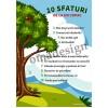 10 Sfaturi de la un copac