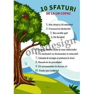 Poster 10 Sfaturi de la un copac - canvas - A2